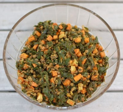 Kale & Sweetpotato Lentil Salad is a hearty vegetarian entree or a delicious side dish to accompany your favorite protein like chicken or fish. Gluten-free, vegetarian, and vegan. @jlevinsonRD