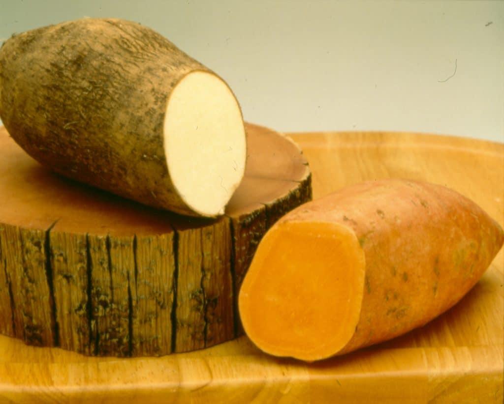 sweet potato awareness