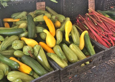 Zucchini at local farmers market in New Rochelle, NY