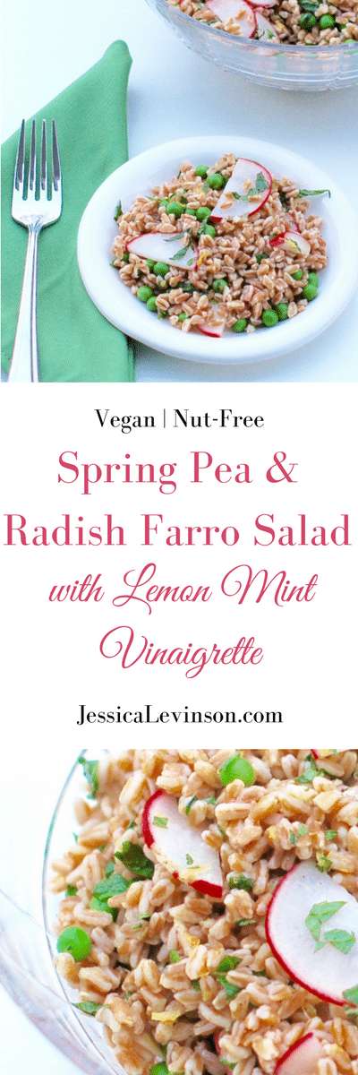 Nutty farro, crunchy radishes, and sweet peas are tossed together in a tart lemon mint dressing in this bright Spring Pea and Radish Farro Salad! Get the vegan and nut-free recipe @jlevinsonrd.