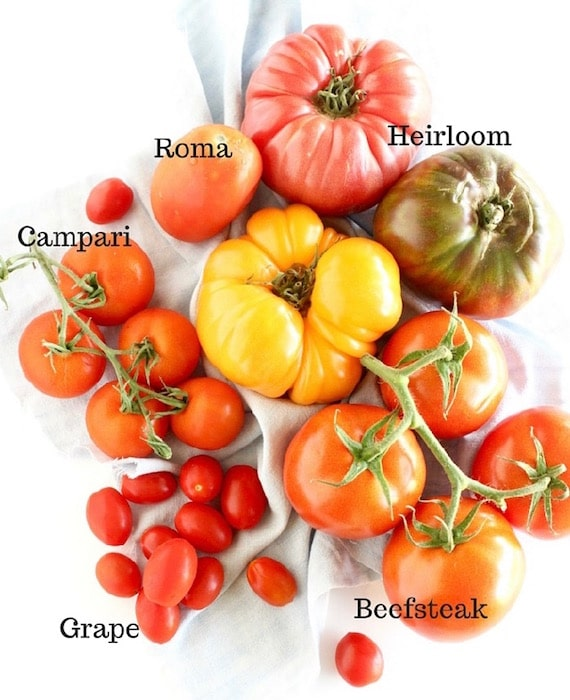 Learn about the varieties, health benefits, & culinary uses of fresh summer tomatoes @jlevinsonrd..