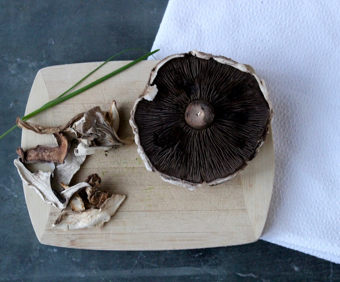 mushrooms come in many varieties, many of which can be used by the home cook.